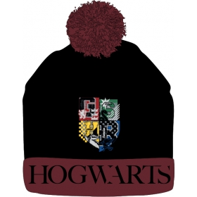 Harry Potter autumn / winter hat